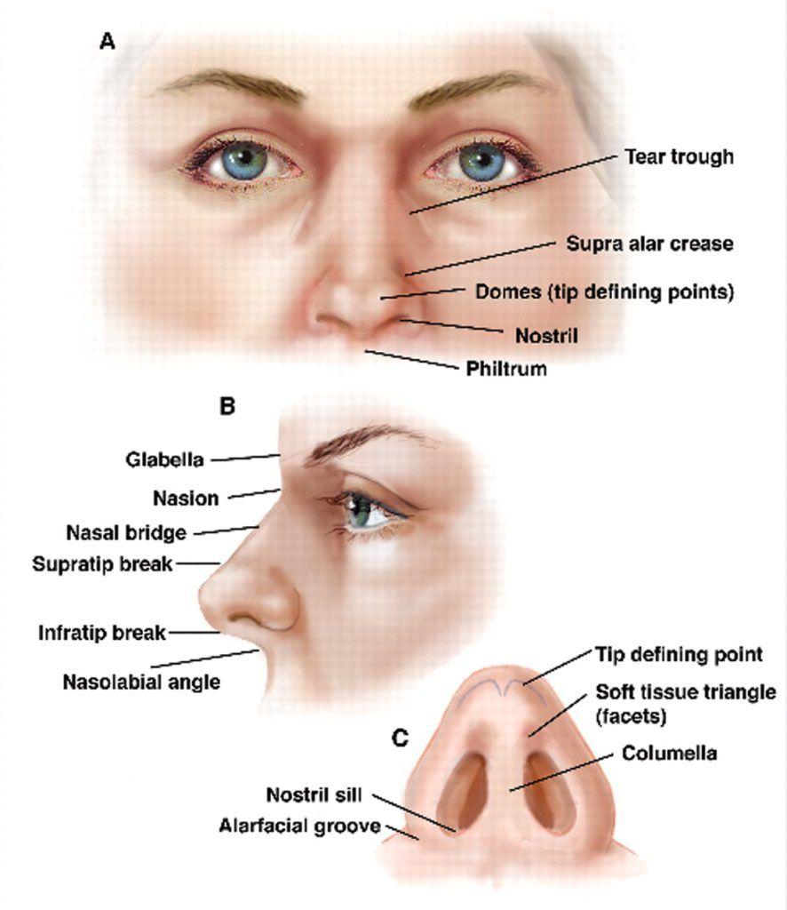human-nose-surgery